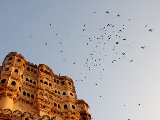 Mehrangarh Fort in Jodhpur on an India Tour