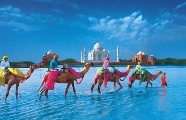 India Flights and Tours