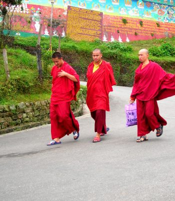 Buddhist Monks on an India Tour